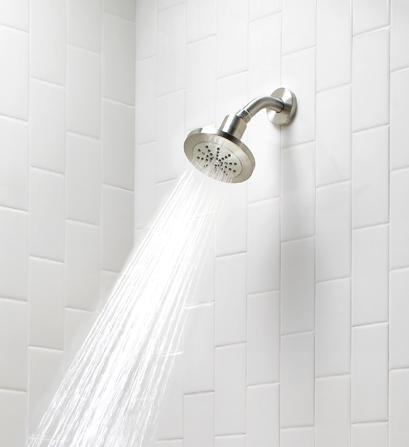 Danze 200 Water Intensity Shower Head