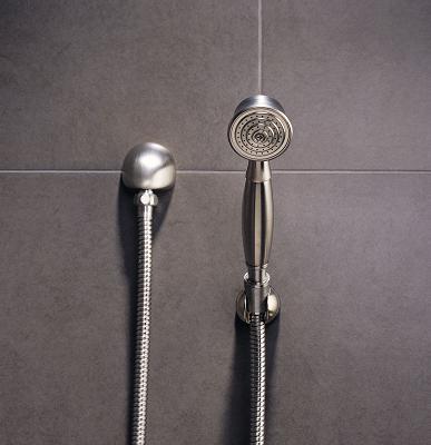 Vesi Hand Shower From Brizo