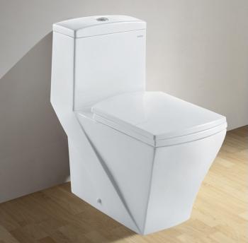 CO1018 Contemporary European Dual Flush Toilet From Ariel