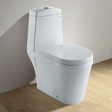 CO1024 Contemporary Dual Flush Toilet From Ariel