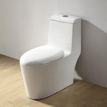CO1042 Contemporary European Toilet From Ariel