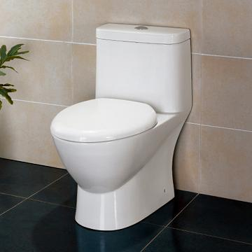 Traditional Contemporary Dual Flush From Ariel