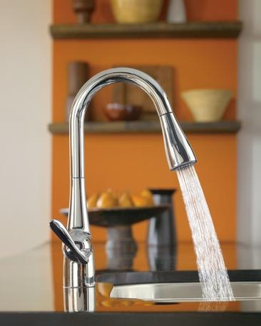 Arbor Kitchen Sink From Moen