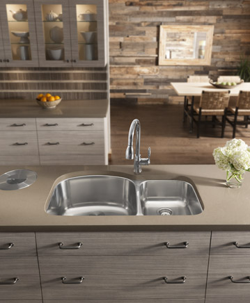 Wave Stainless Steel Double Bowl Undermount Sink From Blanco