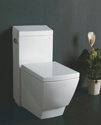 High Efficiency Toilet With 3 Inch Flushing Valve From Eago
