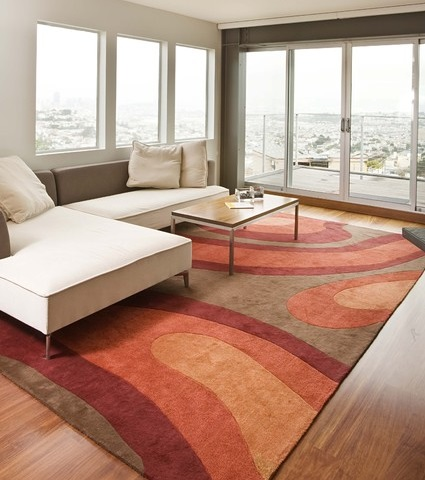 Synthetic area rugs are available in a variety of colors, patterns, and materials, and are inexpensive enough to replace on a whim (by Mark English Architects)