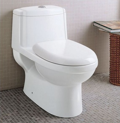 One Piece Dual Flush 1.6-.8 gpf Eco Friendly Toilet From Eago