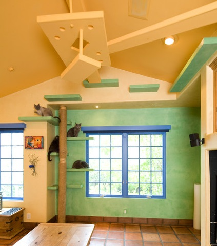 If you're willing to do a more extensive remodel, it's possible to run thin catwalks throughout your entire home, providing an ample cat playground that's entirely out of the way (By Trillium Enterprises Inc., Holly Lepere)