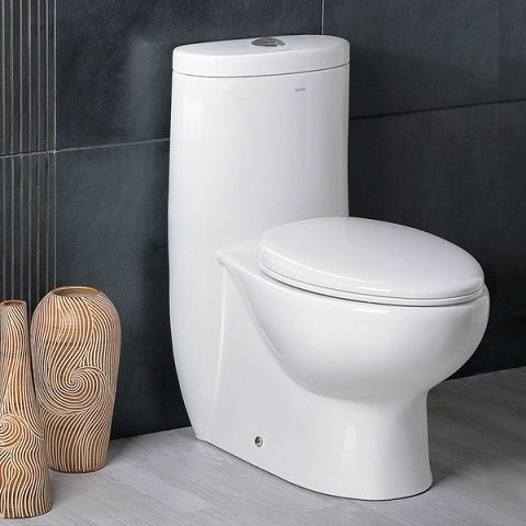 Ariel Platinum TB309-1M Contemporary European Toilet with Dual-Flush