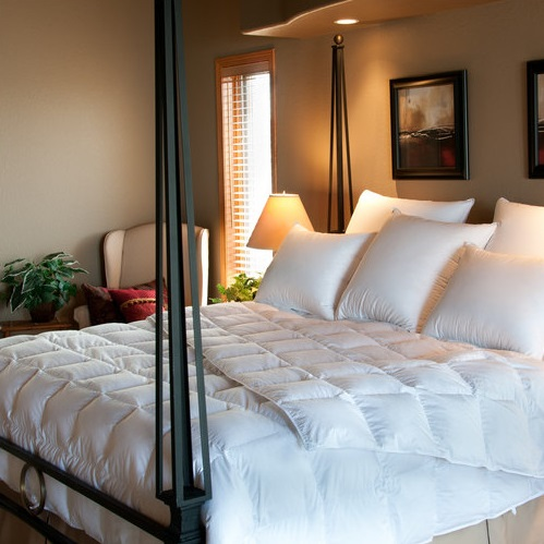 Southernlite Comforter C-A700SL from Ogallala