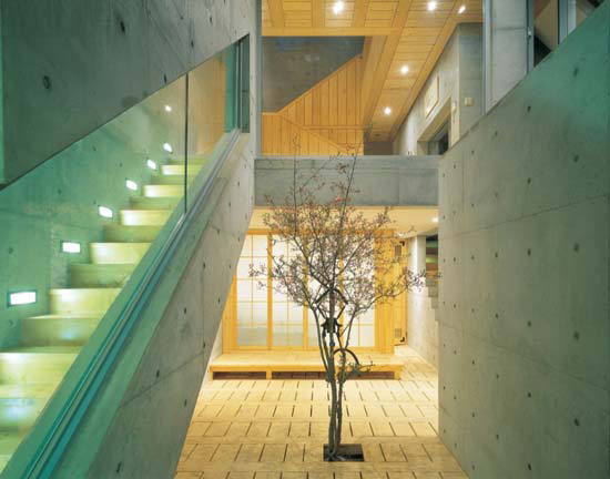 Contemporary Lighting Desiign in Stairwell