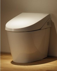 Toto Neorest 550 Dual Flush Toilet with Heated Seat, Warm Air Dryer and Remote Control Operation