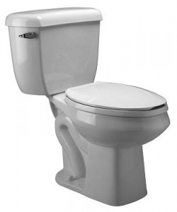 Zurn Dual Flush Pressure Assisted Round Two Piece Toilet