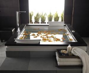Jacuzzi Fuzion Drop In Soaking Tub