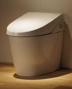 Toto Neorest 550 Dual Flush Toilet