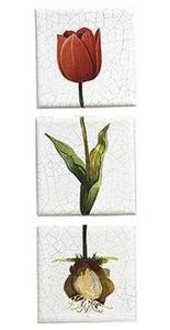Kohler Fables And Flowers Decorative Field Tile