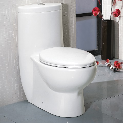 Delphinus One-Piece Dual Flush Toilet FTL2309 from Fresca