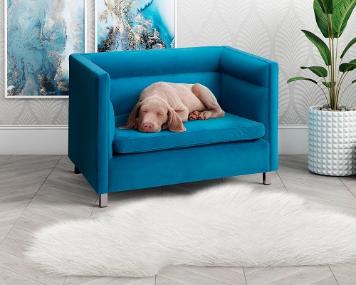 Beagle Light Blue Pet Bed CDF-P2041-LB from Contemporary Design Furniture
