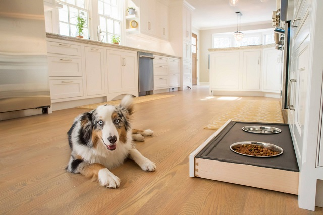 The rising popularity of pet-oriented custom cabinetry is just one obvious example of a bigger trend: kitchens that are designed to make it easier to do chores, and easier to keep the space looking neat and tidy in between (by Sticks 2 Stones Design, LLC)